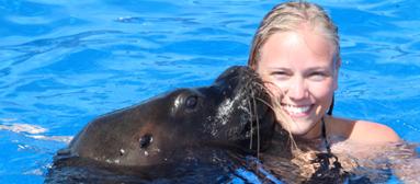 Nado con lobo marino