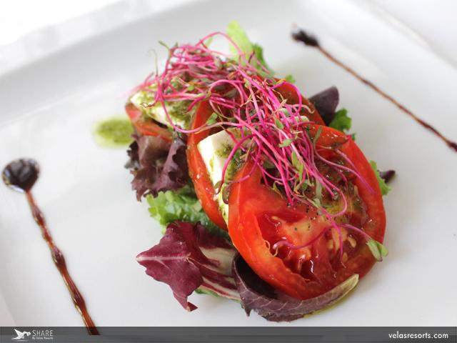 gluten-free-vallarta-travel-blog