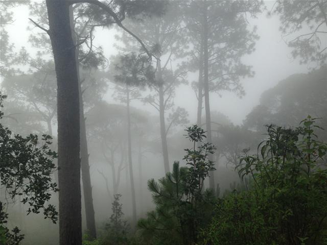Cerro-La-Bufa-Vallarta-Travel-Blog