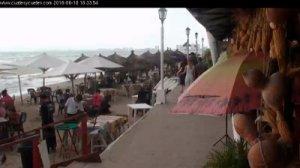 Live Cam Cuates and Cuetes Puerto Vallarta Jalisco