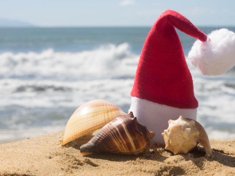 Festive Puerto Vallarta Christmas Activities