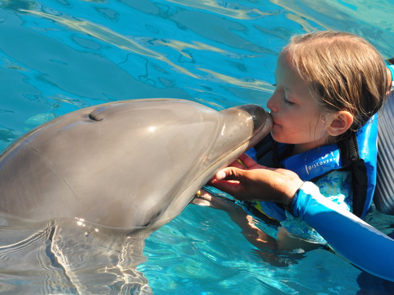 Swimming with the Dolphins of Puerto Vallarta