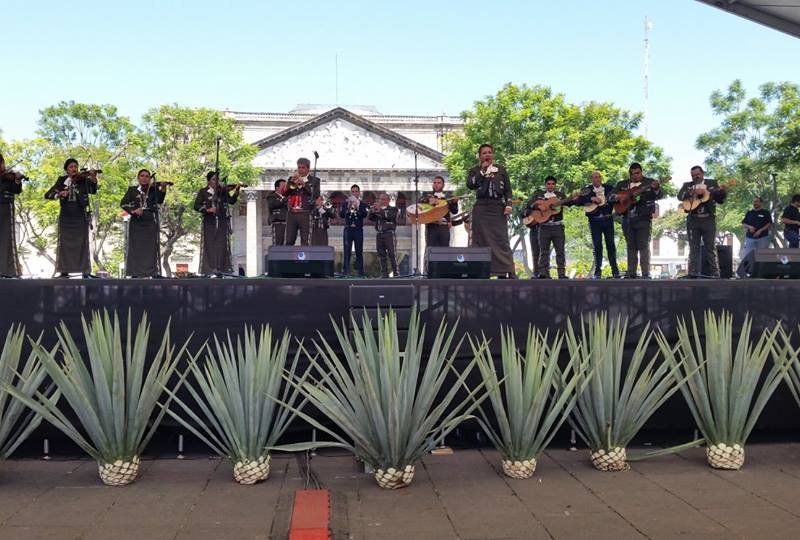 Festival de Música y Arte Puerto Chacala 2016