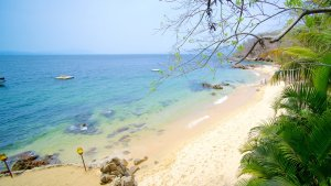 Relaxing Puerto Vallarta Tours Of Las Caletas Beach Hideaway