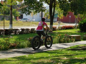 Puerto Vallarta Cycling Tours
