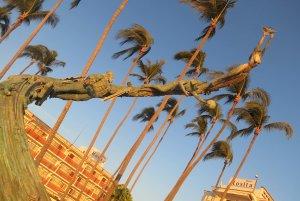 puerto vallarta malecon, millenian, sculpture