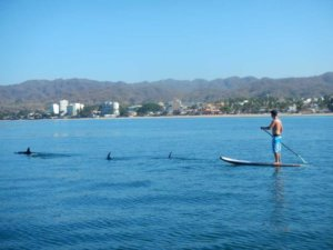 Sup in Bucerias, Paddle board tour throug Bucerias