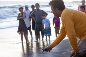 The release of this incredible animal was held at Velas Vallarta Resort at seven o'clock in the evening.