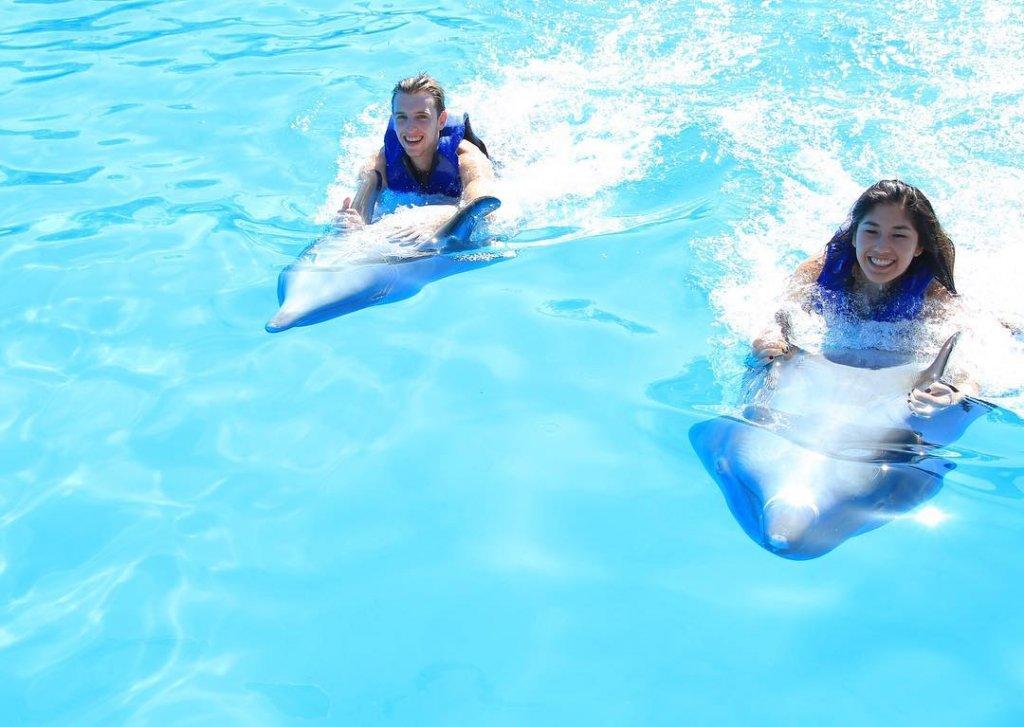 Nado_con_delfines
