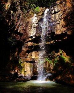 Un atractivo natural escondido en Puerto Vallarta