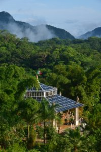 vallartas botanical garden surrounded byvegetation